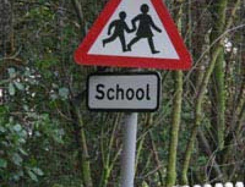 Make Your School More Environmentally Friendly