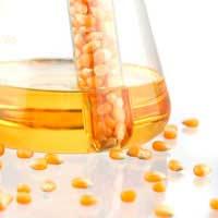 Biodiesel: A Greener Source of Fuel