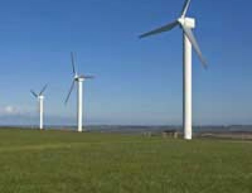 How Green are Green Energy Suppliers